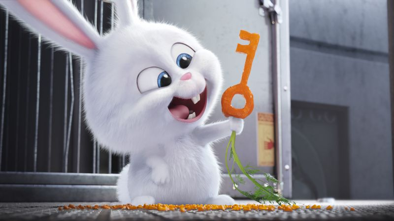 The Secret Life of Pets, rabbit, Best Animation Movies of 2016, cartoon (horizontal)