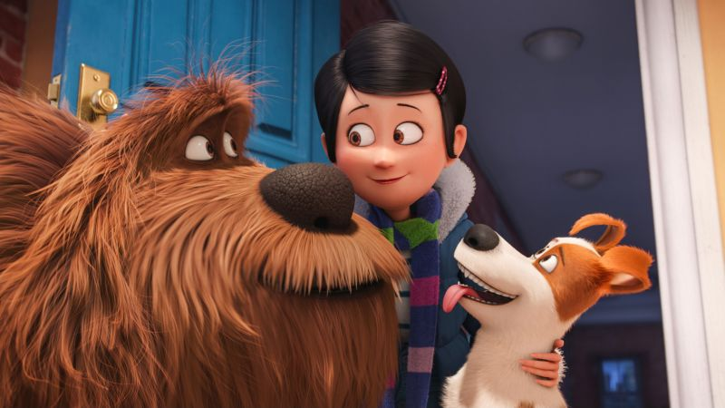 The Secret Life of Pets, dog, Best Animation Movies of 2016, cartoon (horizontal)