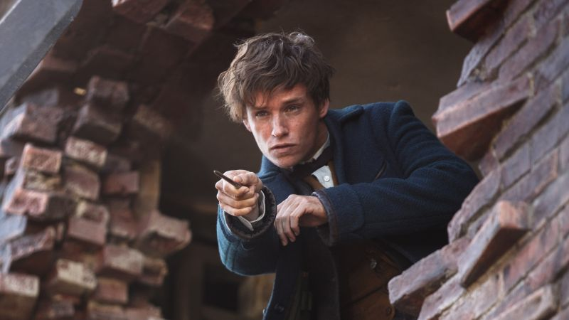 Fantastic Beasts And Where To Find Them, Eddie Redmayne, Best Movies (horizontal)