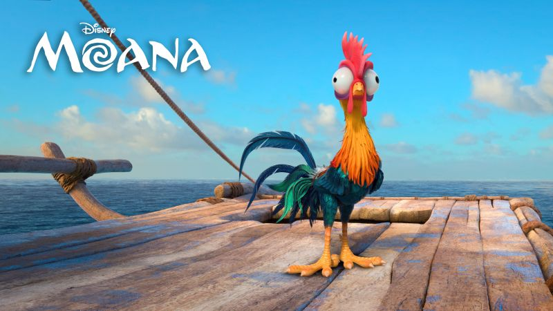 Moana, chiken, heihei, best animation movies of 2016 (horizontal)