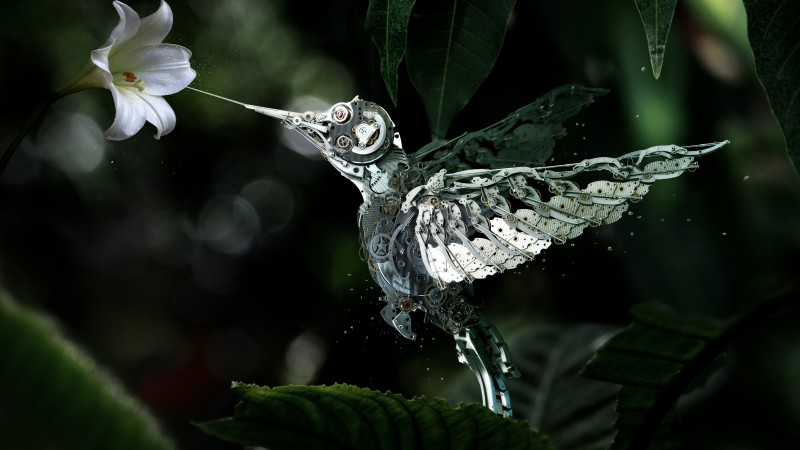 Hummingbird, Сolibri, steampunk, flower, leaves, green, drops, flying, bird, nectar, garden, nature, mechanical (horizontal)