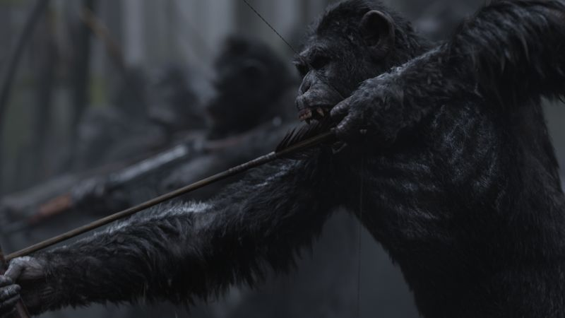 War for the Planet of the Apes, ape, 4k (horizontal)