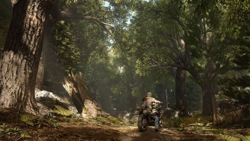 Days Gone, survival horror, bike, PS 4, best games
