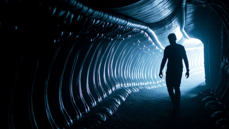 Alien: Covenant, silhouette, best movies (horizontal)