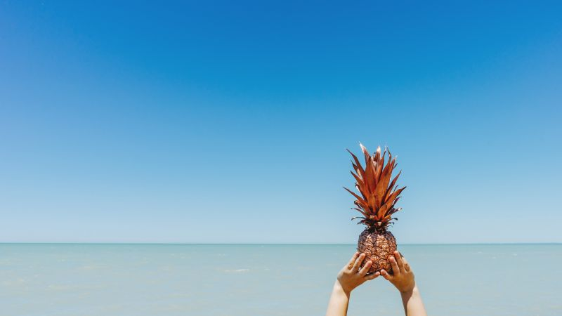 pineapple, sky, ocean, 5k (horizontal)