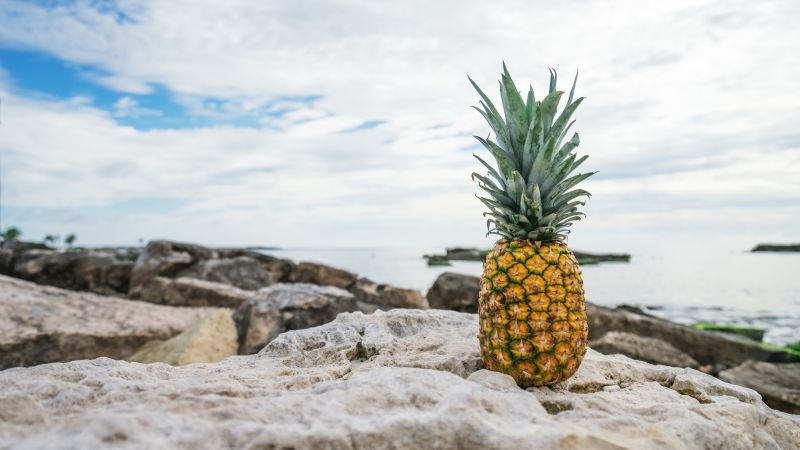 pineapple, fruit, stones, beach, 4k (horizontal)