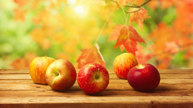 apple, fruit, autumn, 4k (horizontal)