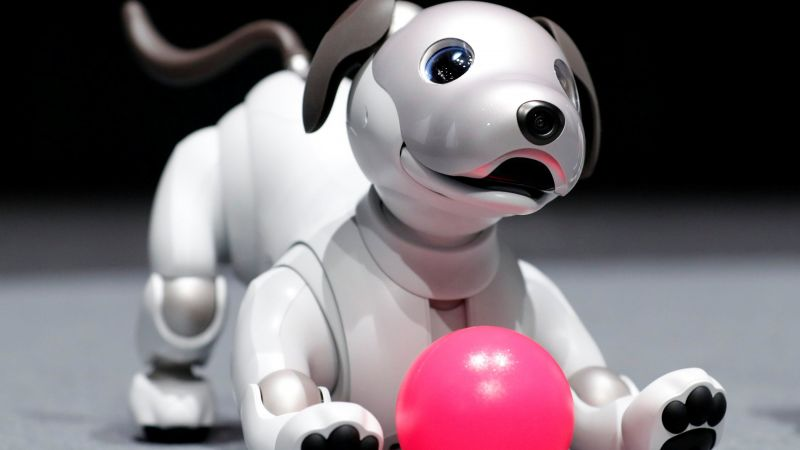 Sony Aibo, robot, dog, 4k (horizontal)