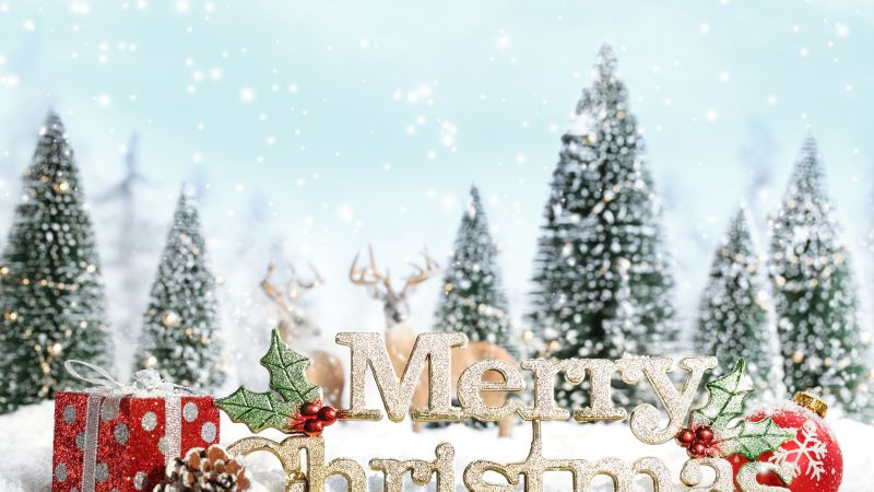 Christmas, snow, gifts, fir-tree, 5k (horizontal)