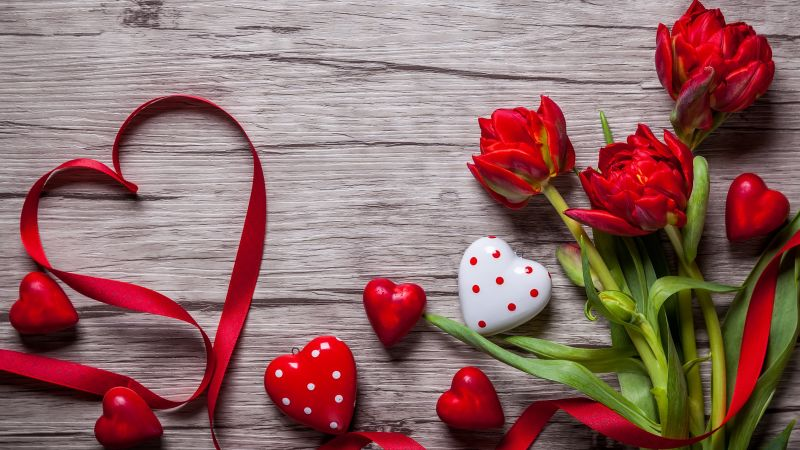 Valentine's Day, love image, heart, flowers, tulips, 5k (horizontal)