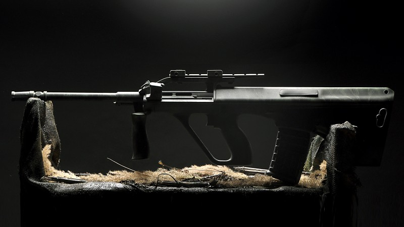 Steyr AUG, assault rifle, Steyr-Daimler-Puch, StG 58, Austrian Armed Forces, AUG (horizontal)