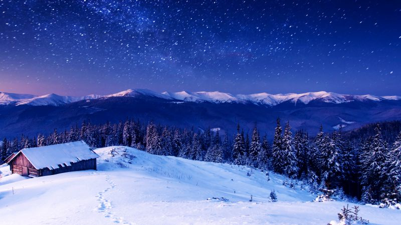 Mountains, night, stars, trees, sky, snow