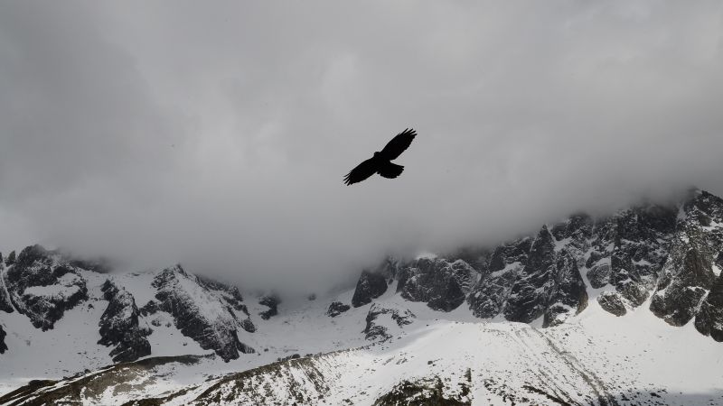 Eagle, mountains, flight, clouds (horizontal)