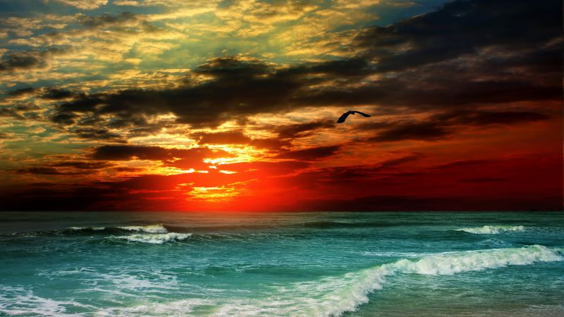 Sea, ocean, sunset, shore, clouds