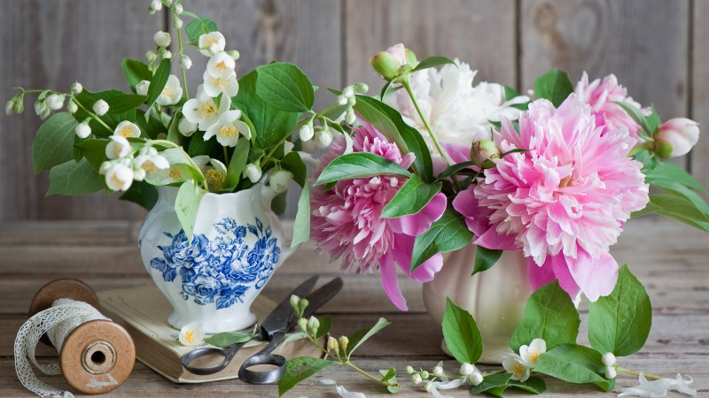 peonies, 5k, 4k wallpaper, jasmine, scissors, vase, ribbon (horizontal)