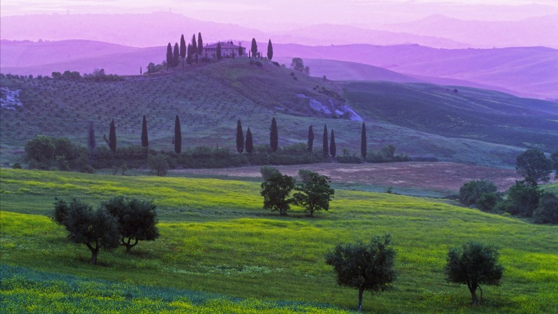 Tuscany, Italy, Podere Belvedere Hotel, fields, meadows, villages, green, nature, booking, rest, travel