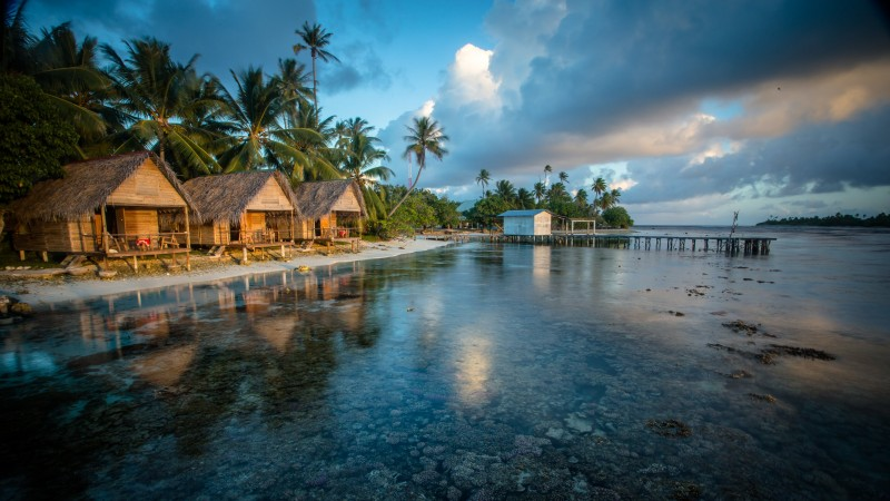 Bungalows, 4k, HD wallpaper, Reef, French Polynesia, water, clouds, palms, World's best diving sites (horizontal)