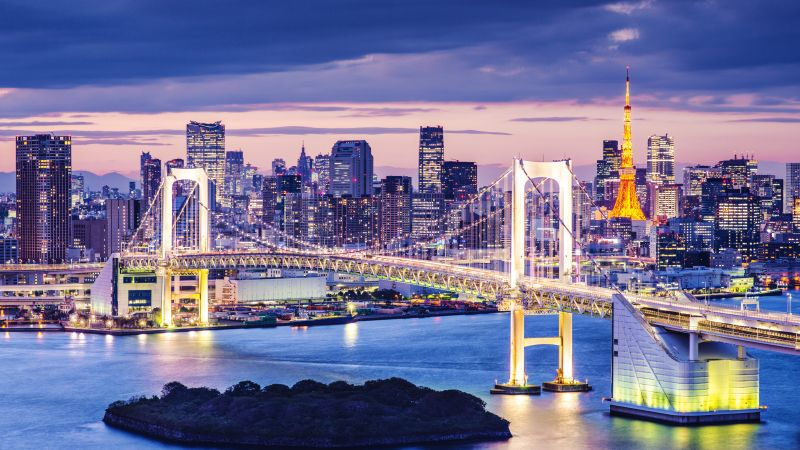 Tokyo Bay, Japan, bridge, night, travel, tourism (horizontal)