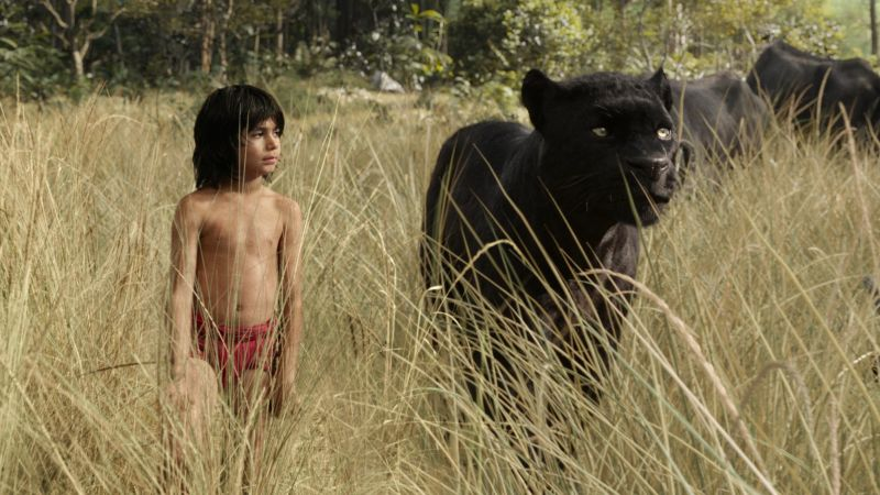 The Jungle Book, Mowgli, Bagheera, adventure, fantasy, Best movie of 2016 (horizontal)