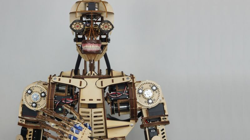 Roy the robot, Maker Faire-2015, ROBOTS