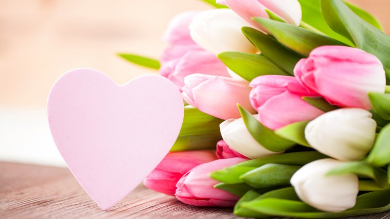Valentine's Day, flowers, tulips, hearts, love (horizontal)