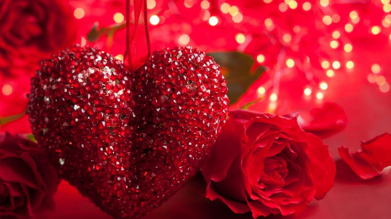 Rose, 5k, 4k wallpaper, heart, Valentine's Day, love, romance, red, romantic (horizontal)