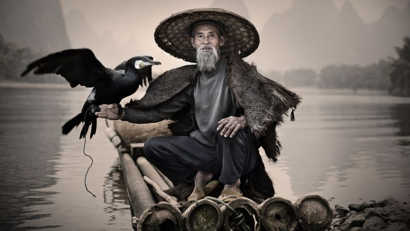 Cormorant, Li-River, Xingping, China, fishing village, bird, National Geographic Traveler Photo Contest (horizontal)