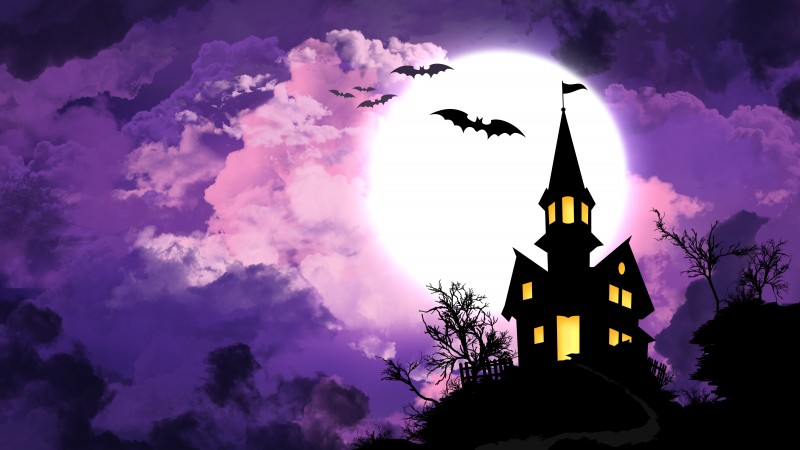 Halloween, All Hallows' Eve, All Saints' Eve, night, hill, bats, full moon,  (horizontal)