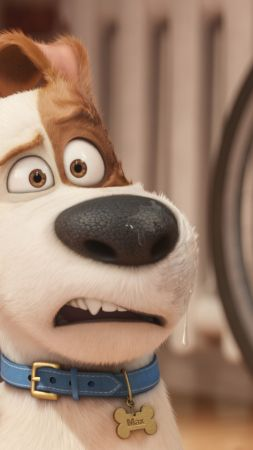 The Secret Life of Pets, dog, Best Animation Movies of 2016, cartoon (vertical)
