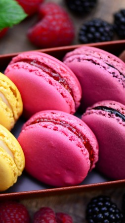 macaroon, recipe, cooking, chocolate, lemon, blackberry, raspberry,  (vertical)