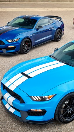 Mustang Shelby GT350, hardsedan, muscle car, blue (vertical)