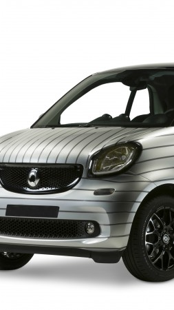 "smart fortwo ""pinstripe"", silver (vertical)"