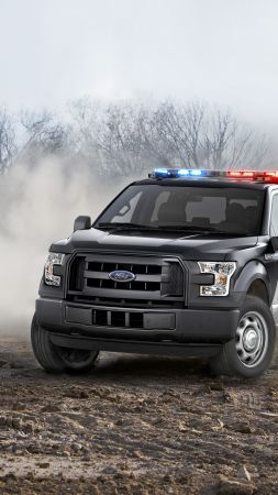 Ford F150, Safety car (vertical)