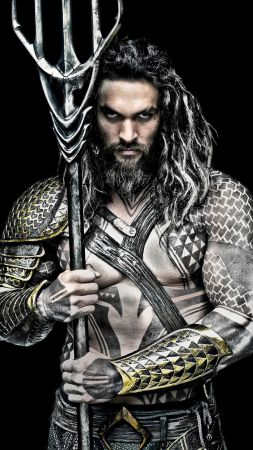 Aquaman, Jason Momoa, DC, superhero (vertical)