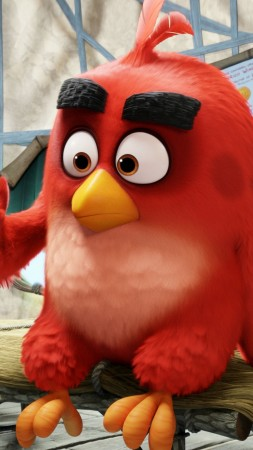 Angry Birds Movie, red, Best Animation Movies of 2016