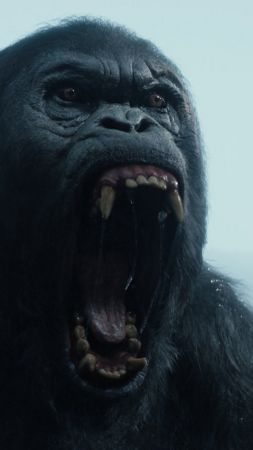 The Legend of Tarzan, gorilla, best movies 2016 (vertical)