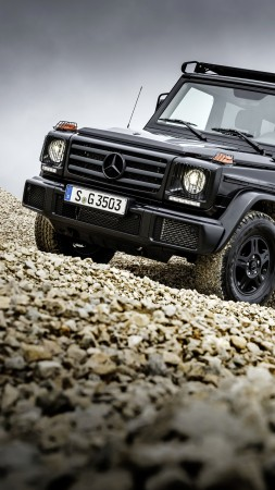 Mercedes-Benz G 350 d Professional, suv, black (vertical)