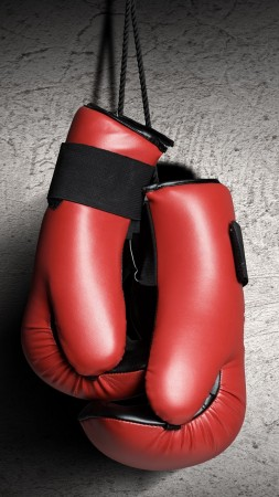 Boxing gloves, red, boxing (vertical)