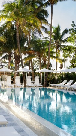Metropolitan by COMO, Miami, hotel, pool, sunbed, water, palm, sky, travel, vacation, booking (vertical)