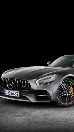 Mercedes-AMG GT C Roadster, paris auto show 2016, roadster, silver (vertical)