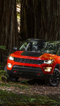 Jeep Compass Trailhawk, suv, orange, forest (vertical)