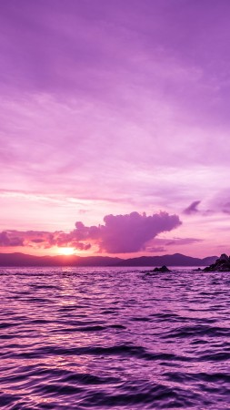 Pelican island, sunset, purple