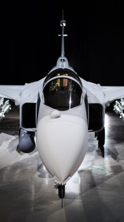 JAS-39E Gripen, fighter aircraft, Swedish Air Force (vertical)