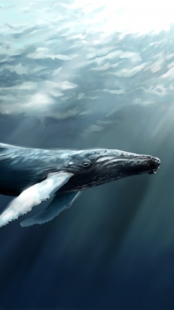 Whale, sea, ocean, water, underwater, diving, art, rays, World's best diving sites (vertical)
