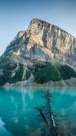 Lake Louise, 4k, HD wallpaper, Сanada, travel, mountain (vertical)