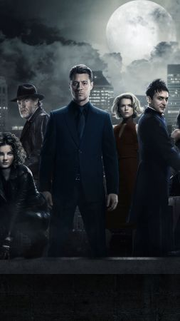 Gotham 3 season, Gotham, TV Series, crime (vertical)