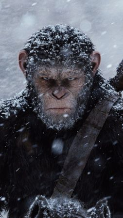 War for the Planet of the Apes, ape, 4k (vertical)