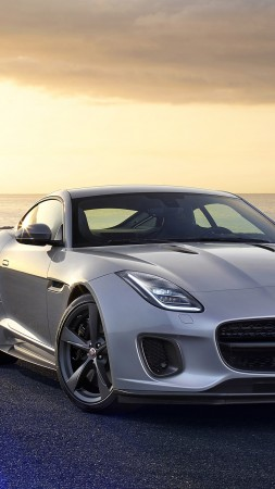 Jaguar F-TYPE, roadster, best cars (vertical)