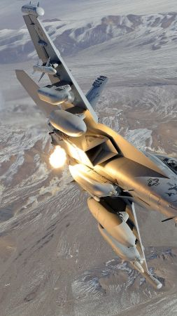 Boeing EA-18 Growler, Electronic Attack Aircraft (vertical)
