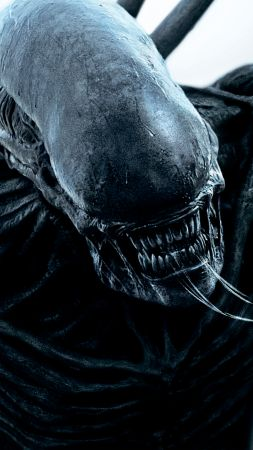 Alien: Covenant, 4k, HD, alien, monster, best movies (vertical)
